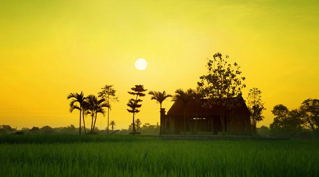 Sun Set On Duong Lam Village