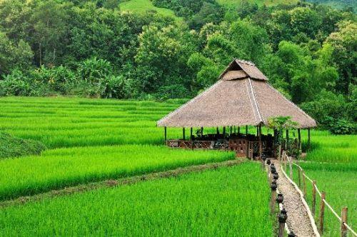 Amazing Village In Laos